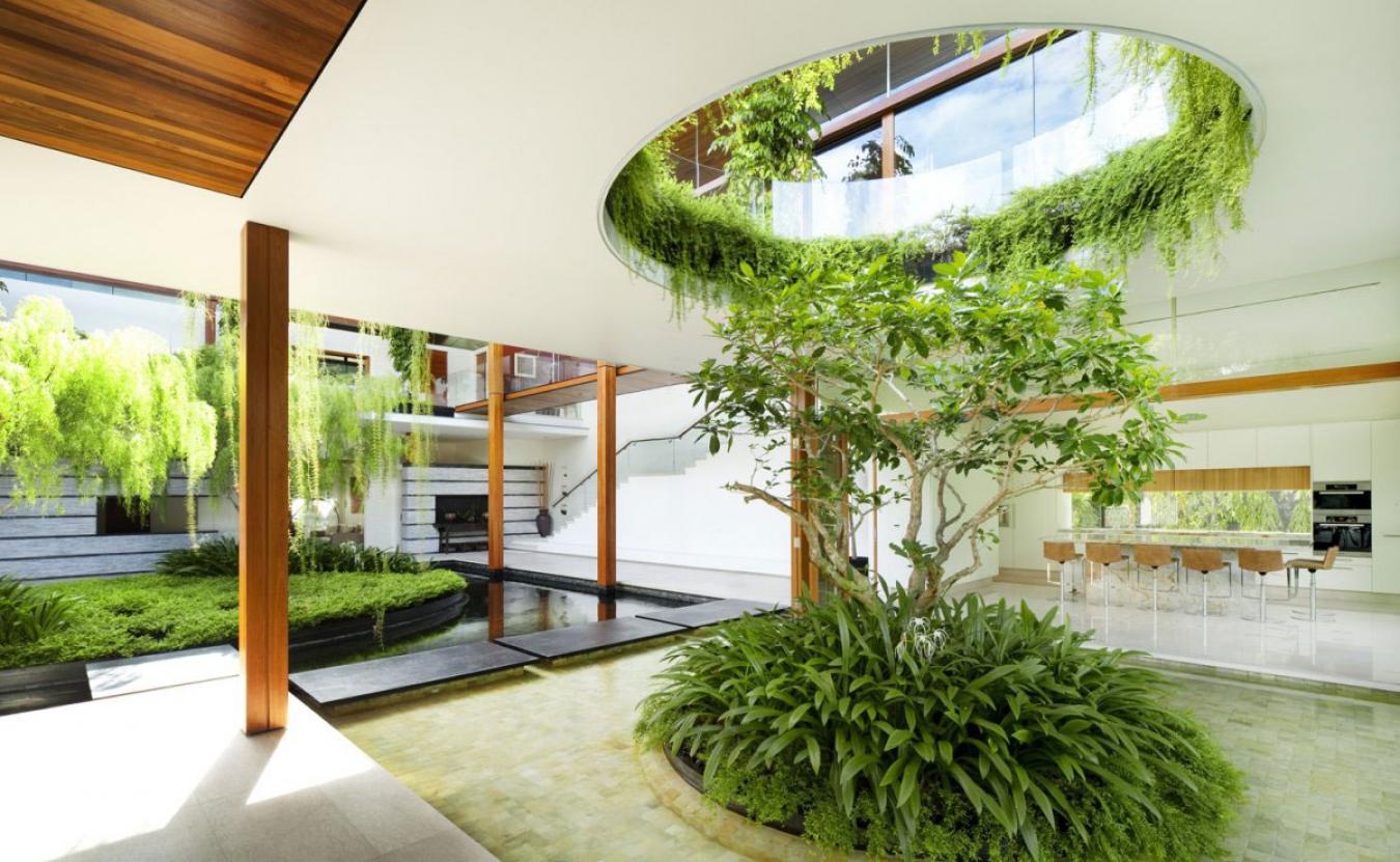 декорирования квартиры растениями