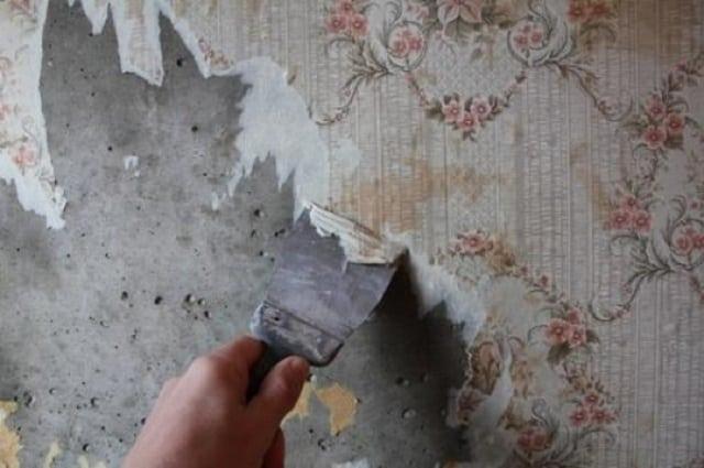 Как бороться с грибком под обоями в домашних условиях_6