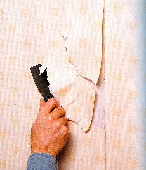 Как бороться с грибком под обоями в домашних условиях_2