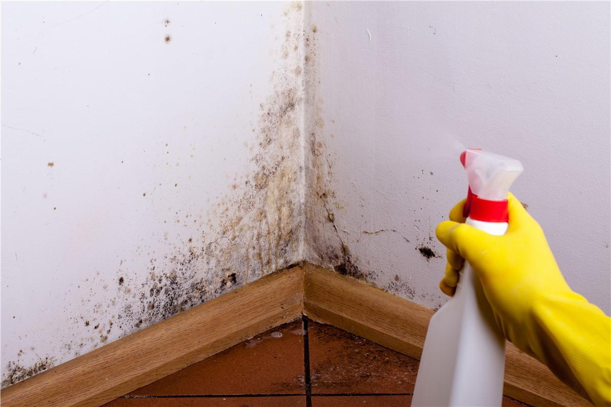 Как разобраться с плесенью в ванной комнате_4