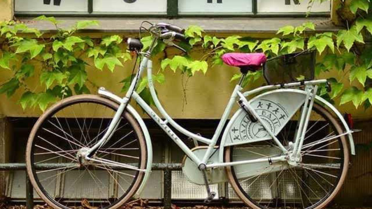 Куда убрать велосипед на зиму_1